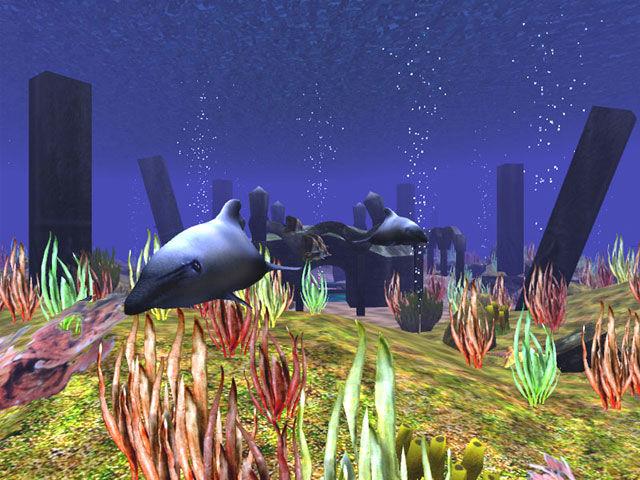 Dolphin Aqua Life 3D screensaver: Watch the peaceful ...